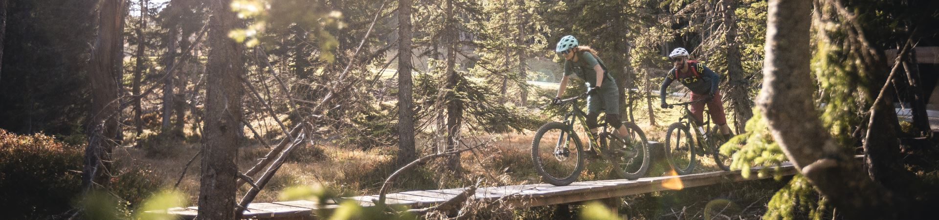 Mountainbike & Bike in Leogang